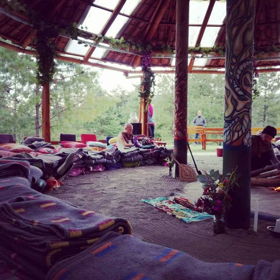 This Is The Effect And The Use Of Ayahuasca Plant